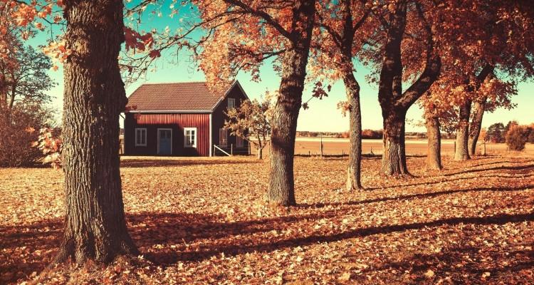 Descubra porque viajar no outono é uma experiência mágica
