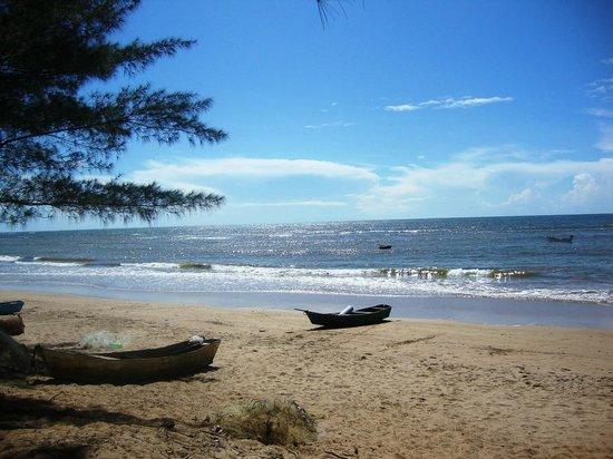 Praia da Guaxindiba