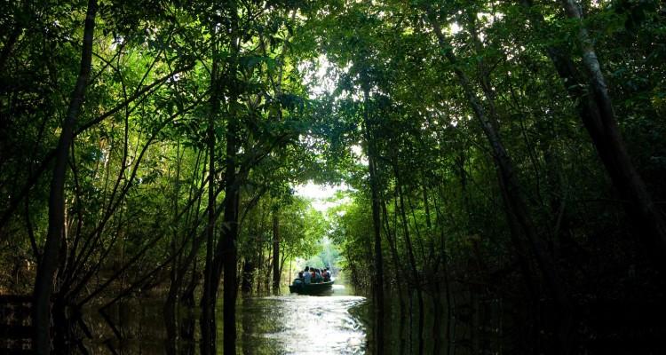 O que preciso saber para conhecer a Amazônia?